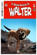 The Amazing Adventures of Walter