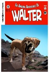 The Amazing Adventures of Walter
